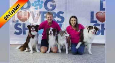 Sydney Dog Lovers Show 2018